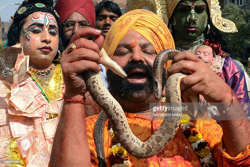An Indian Sikh devotee holds a snake in a procession during the Maha Shivaratri festival in Amritsar on March 10, 2013, on the occasion of the festival dedicated to the Hindu God, Lord Shiva, Maha Shivaratri. The festival of Maha Shivaratri is marked by Hindus through fasting and offering prayers in a night long vigil.