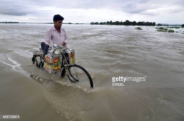 An Indian villager pushes his bicycle along a submerged road in the flood affected village of Ashigarh some 70 km from Guwahati on August 16 2014...