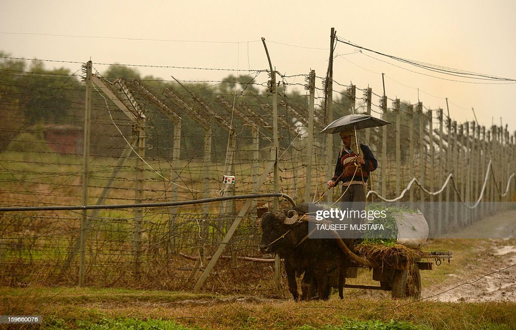 An Indian villager steers a bullock-cart during a rain shower alongside the border fence at an outpost along the India-Pakistan border in Suchit-Garh, 36 kms southwest of Jammu on January 18, 2013. On both sides of the de facto border in Kashmir, villagers living on one of the world's most dangerous flashpoints have special reason to fear the return of tension between India and Pakistan. AFP PHOTO/Tauseef MUSTAFA