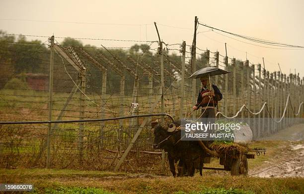 An Indian villager steers a bullockcart during a rain shower alongside the border fence at an outpost along the IndiaPakistan border in SuchitGarh 36...