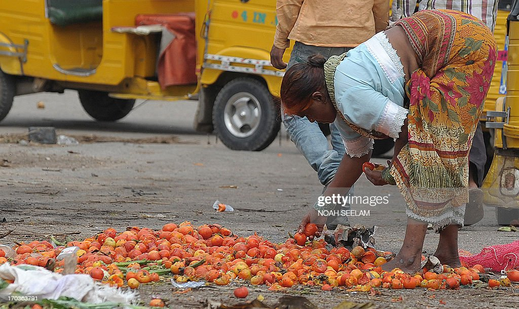 An Indian woman collects spoilt tomatoes discarded by vendors at a vegetable wholesale market in Hyderabad on June 12, 2013. The National Food Security Bill - 2011, considered to be the world's largest experiment in ensuring food security to the poor, has been a key project of Congress president Sonia Gandhi and finally seems to be getting off the ground at a whopping cost of 1.25 lakh crore Indian rupees. The Bill aims at meeting the food needs of 75% of rural households and 50% of urban households. AFP PHOTO / Noah SEELAM