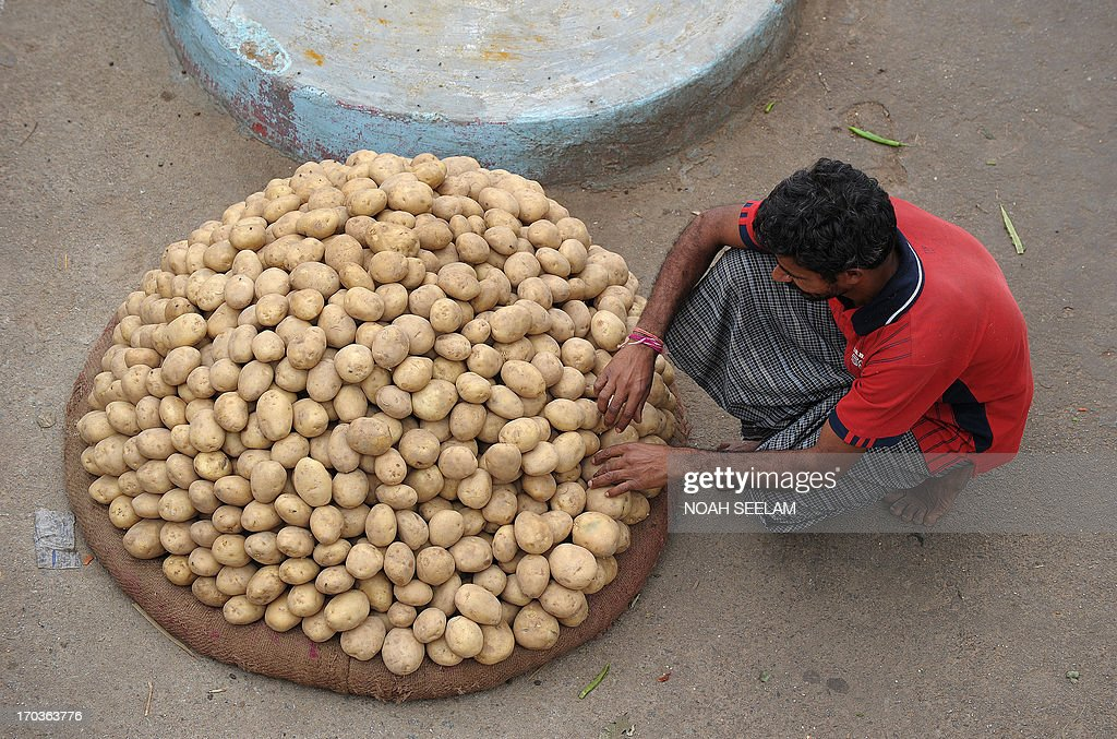 An Indian worker arrange potatoes at a vegetable wholesale market in Hyderabad on June 12, 2013. The National Food Security Bill - 2011, considered to be the world's largest experiment in ensuring food security to the poor, has been a key project of Congress president Sonia Gandhi and finally seems to be getting off the ground at a whopping cost of 1.25 lakh crore Indian rupees. The Bill aims at meeting the food needs of 75% of rural households and 50% of urban households. AFP PHOTO / Noah SEELAM