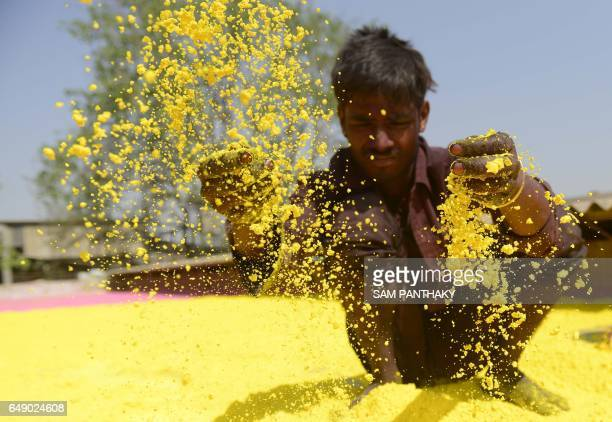 TOPSHOT An Indian worker dries out ecofriendly herbal coloured powder ahead of the upcoming Hindu festival of Holi at a factory on the outskirts of...