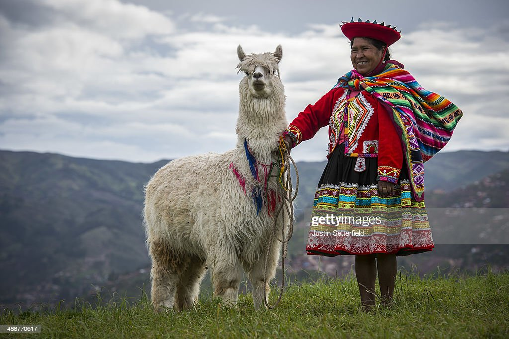 An indigenous Peruvian woman poses with her Llama at Sacsayhuaman above the Incan city of Cusco on January 13 2014 in Cusco Peru The historic town of...