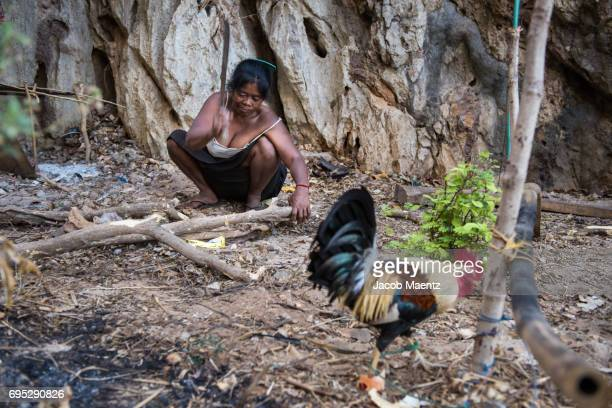 An indigenous Tagbanua woman cutting firewood.