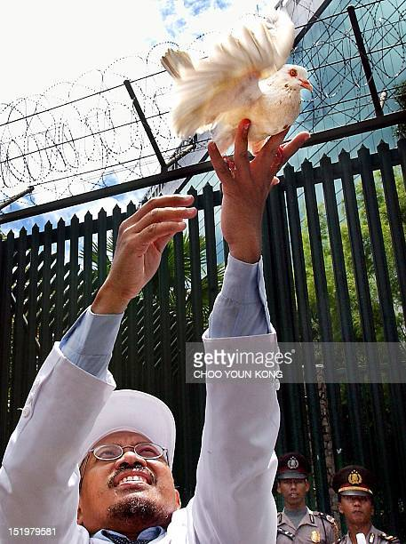 An Indonesian Muslim protester tosses a dove into the air in Jakarta 15 February 2003 to protest against the US government's plan to attack Iraq...