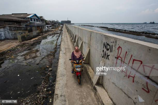 An Indonesian woman rides her motorcycle along a recently built section of seawall on April 26 2017 in Jakarta Indonesia Jakarta one of the world's...