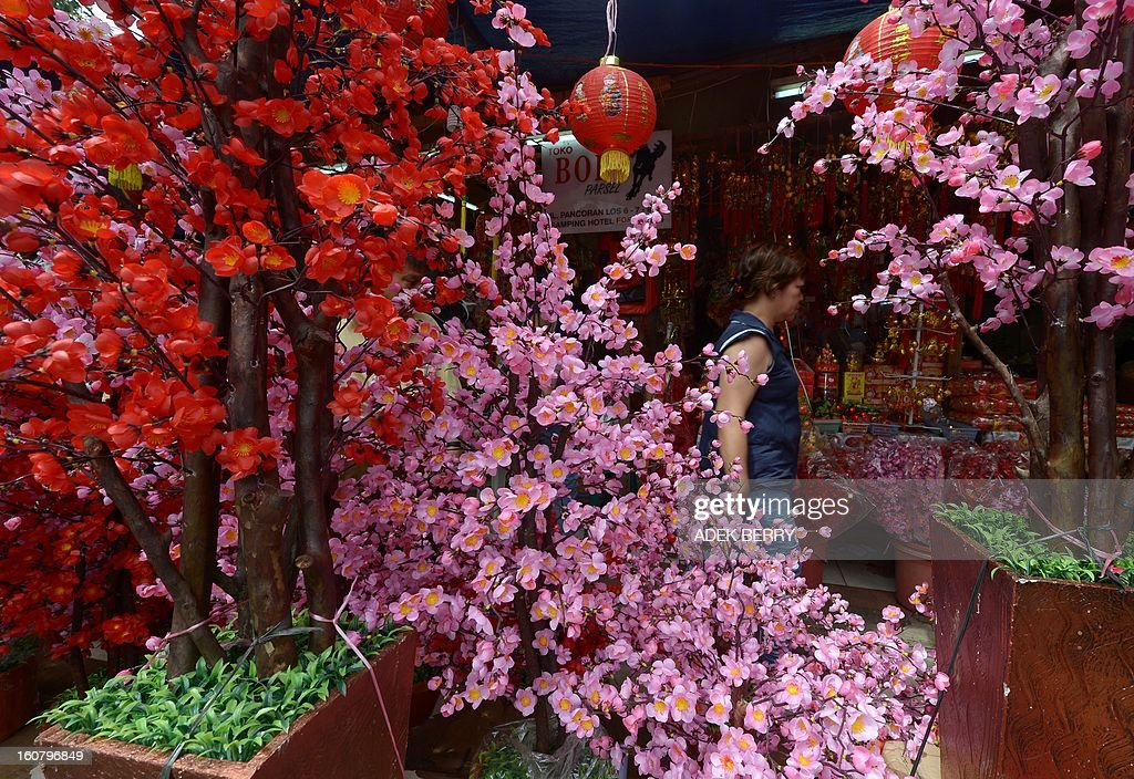 An Indonesian woman walks past Chinese's artificial trees for sale at a market in Jakarta on February 6, 2013 ahead of the Chinese Lunar New Year The Chinese New Year of the Snake falls on February 10, 2013. AFP PHOTO / ADEK BERRY