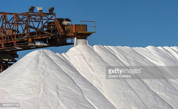 An industrial conveyer belt dumps salt collected from dried ponds onto a huge pile at the Exportadora de Sal company plant in Guerrero Negro Baja...