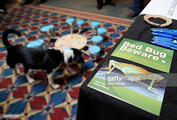 An informative brochure is displayed at the Detective Bed Bug booth as bedbugdetecting dog Bella sniffs out the pests during a demonstration at the...
