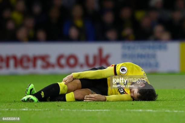 An injured Mauro Zarate of Watford lays on the turf during the Premier League match between Watford and West Ham United at Vicarage Road on February...