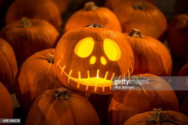 An installation of 3000 candlelit pumpkins blanket the canal side steps at Granary Square on October 31 2014 in London England The pumpkins created...