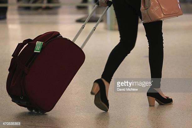 An international air traveler arrivies at Tom Bradley International Terminal at Los Angeles International Airport are seen on February 19 2014 in Los...