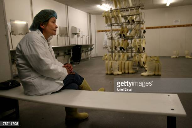 An inuit woman sits in a dressing room of a fish processing plant on August 30 2007 in Ilulissat Greenland Even though the disappearing ice cap could...