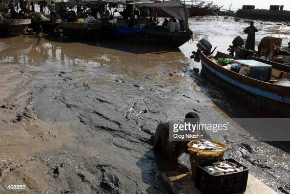 Water mass stock photos and pictures getty images for Places that sell fish near me