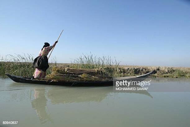 An Iraqi Marsh Arab woman steers her canoe laden with reeds at Hor Hamidi 30 kms south of the Souk akShuykh 420 kms south of the capital Baghdad on...