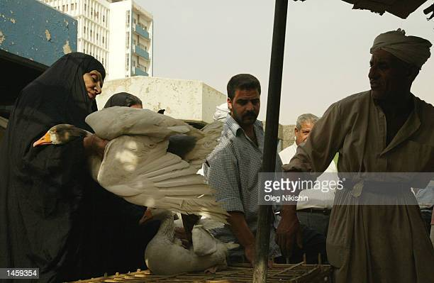 An Iraqi woman purchases a goose at a pet market October 4 2002 in Baghdad Iraq Chief United Nations arms inspector Hans Blix announced after a...