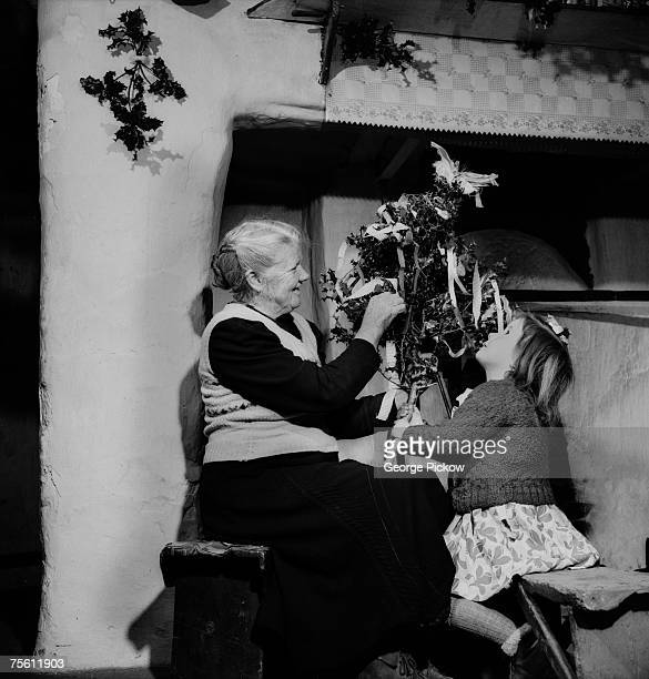 An Irish family create a 'wren' from ribbons holly and feathers ready for St Stephen's Day or 'Wren's Day' on 26th December circa 1955 The children...