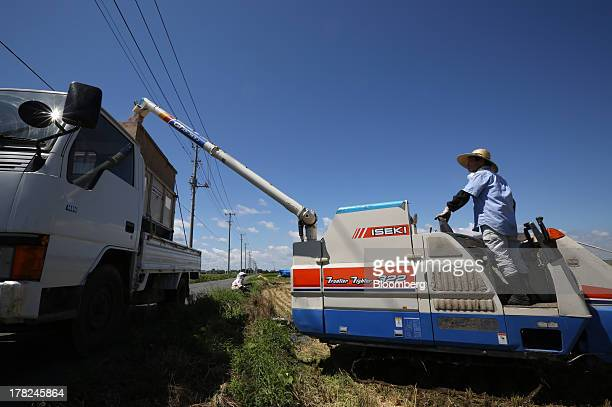 An Iseki Co combine harvester loads a truck with rice in a paddy field in Sakura Chiba Prefecture Japan on Tuesday Aug 27 2013 Japan is...