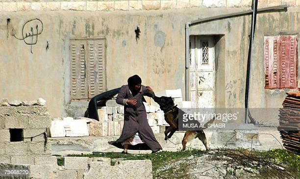 An Israeli army dog attacks a Palestinian woman as soldiers carry out an army raid in the West Bank village of Obadiya near the Biblical town of...