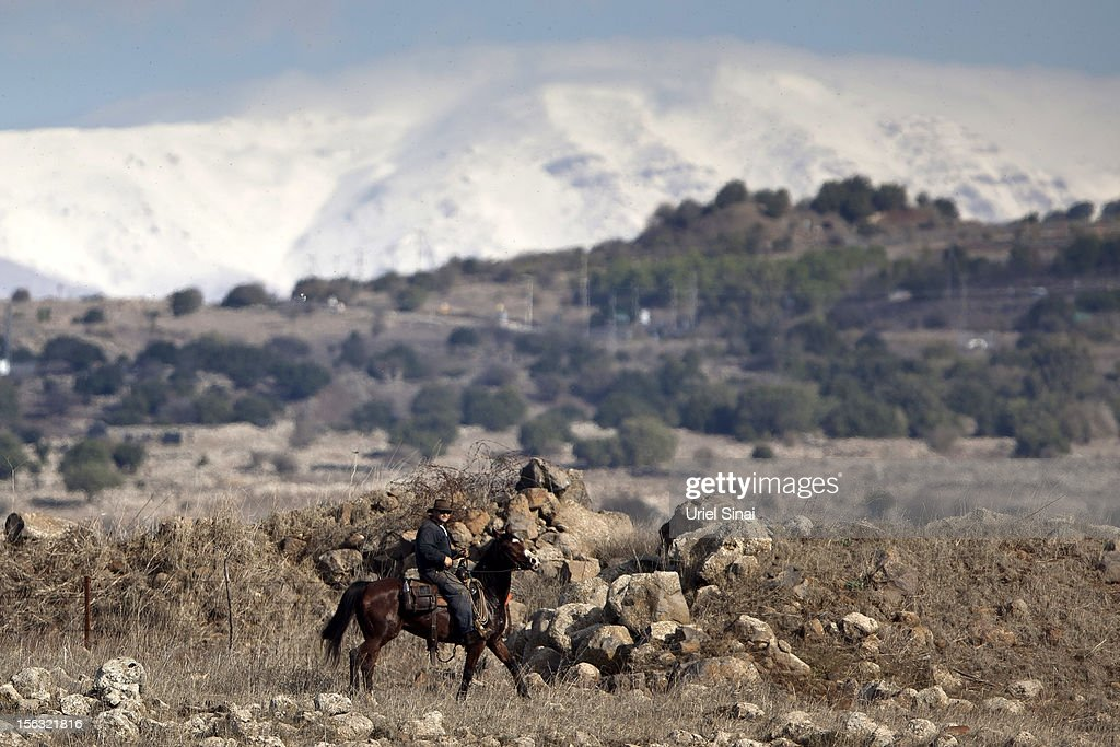 An Israeli cattle herder watches his herd on November 13, 2012 near Alonei Habashan in the Golan Heights. Tension remains high in the disputed Golan Heights after Israeli Defence Forces retaliated after mortar shells were fired into Israeli territory from Syria.