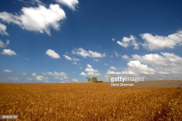 An Israeli farmer harvests the wheat crop along the border with the Gaza Strip on April 30 2008 in the fields near Kibbutz Be'eri in southern Israel...