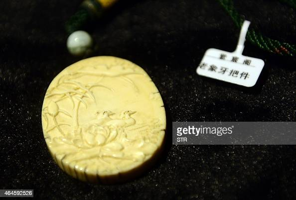 An ivory ornament is displayed at a shop in an antique market in Qingdao east China's Shandong province on February 27 2015 Beijing has imposed a...
