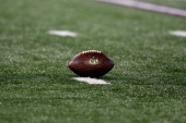 An NFL football sits on the turf during the San Francisco 49ers and Baltimore Ravens game at MT Bank Stadium on November 24 2011 in Baltimore Maryland