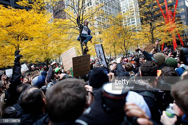 An Occupy Wall Street protester climbs a tree in Zuccotti Park on November 17 2011 in New York City Hundreds of protesters attempted to shut down the...