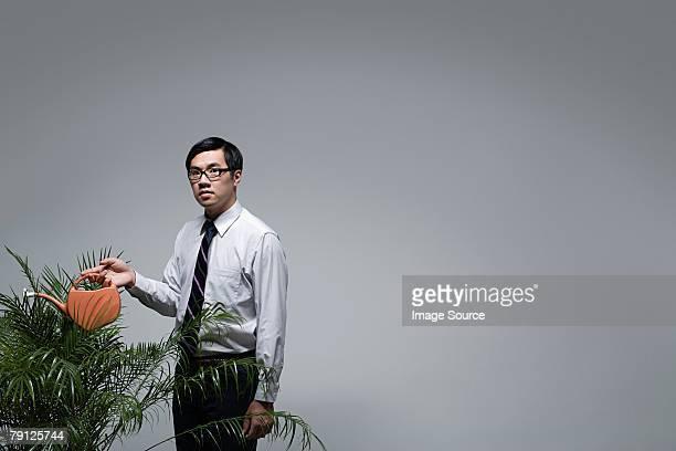 Un employé de bureau arroser une plante