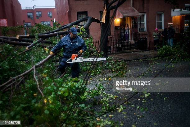 An officer with the New York City Police Department Emergency Services Unit cuts away a fallen tree in the Red Hook neighborhood of Brooklyn in New...