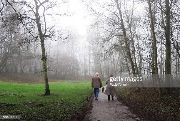 An old couple walking in the Park