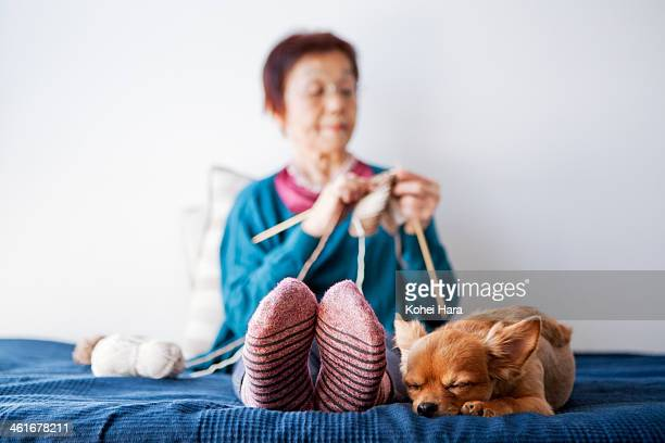 An old woman and a dog relaxed at home