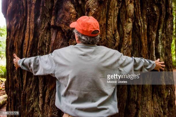 An older man hugs a giant Redwood tree in Redwoods National Park, CA.