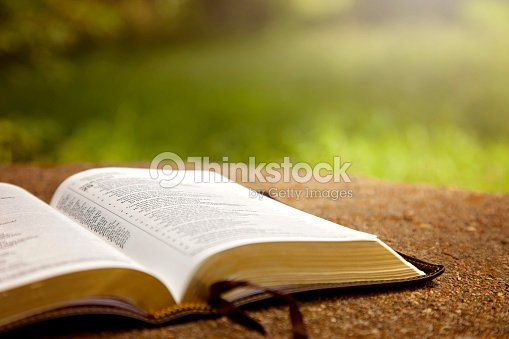 Una Biblia Abierta Sobre Una Mesa En Un Jardín Verde Foto