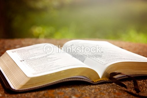 an opened bible on a table in a green garden stock photo thinkstock