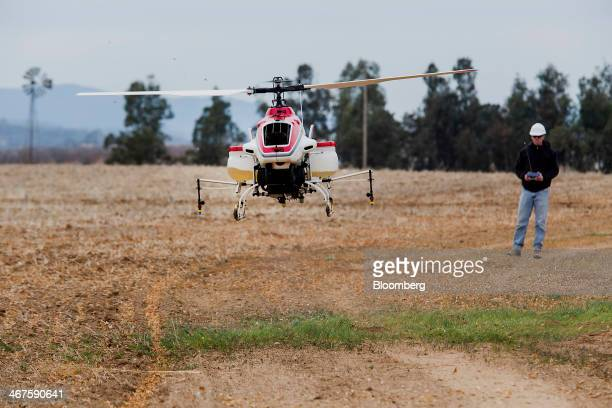 An operator mans a Yamaha RMax Unmanned Aerial Vehicle during a crop dusting test flight at a University of California Davis test facility in...