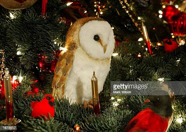 An ornamental Owl sits on a Christmass tree in the Blue Room of the White House December 5 2002 in Washington DC First lady Laura Bush hosted a media...