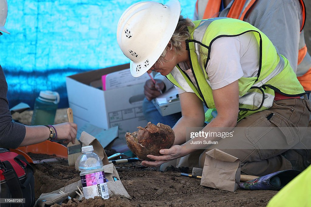 An osteologist handles a human skull that was excavated from an historic graveyard discovered during construction at Santa Clara Valley Medical Center on June 13, 2013 in San Jose, California. Osteologists and archeologists have excavated the remains of 631 people from a construction site at Santa Clara Valley Medical Center along with a number of artifacts that date back to the late 1800s. The excavated graves are bellieved to have been from between the late 1800s and the 1920s. The potter's field, a graveyard reserved for burial of persons who were indigent, unknown or unclaimed, was uncovered by construction crews in February 2012 while doing grading work for the constructin of a new hospital services Building.