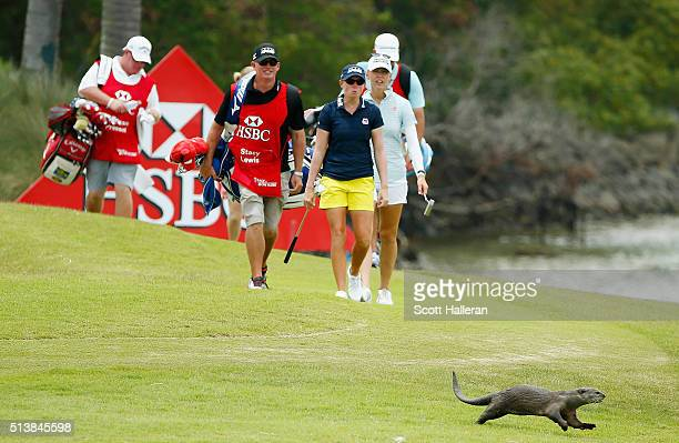 An otter runs in front of the group of Stacy Lewis and Jessica Korda of the United States on the 14th hole during the third round of the HSBC Women's...