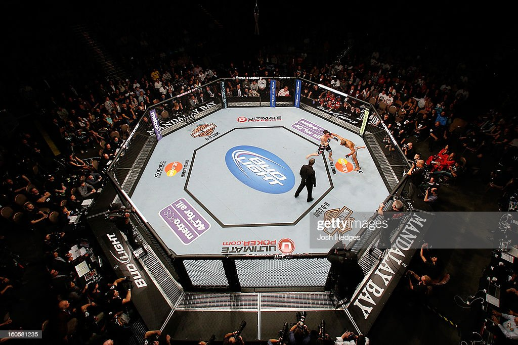 An overhead view of the Octagon as Jose Aldo (R) jumps off the cage to throw a flying punch at Frankie Edgar during their featherweight title fight at UFC 156 on February 2, 2013 at the Mandalay Bay Events Center in Las Vegas, Nevada.