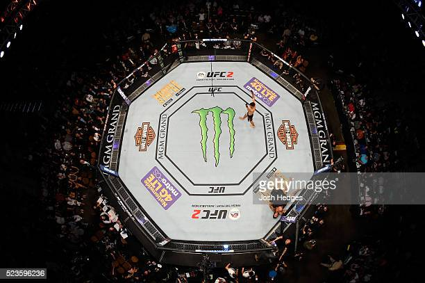 An overhead view of Yair Rodriguez of Mexico celebrating his knockout victory over Andre Fili in their featherweight bout during the UFC 197 event...