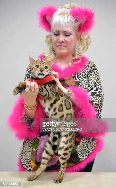 An owner poses with her Bengal cat during a cat exhibition in Bishkek on March 19 2017 Cat lovers from Kyrgyzstan Kazakhstan and Uzbekistan took part...