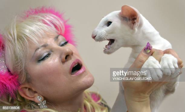 An owner poses with her Oriental Shorthair cat during the International cat exhibition in Bishkek on March 19 2017 Cat lovers from Kyrgyzstan...