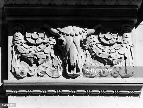 An ox skull is in the capitals of the Boston 5 Cent Saving Bank along Province and School Streets in Boston photographed on May 17 1973 They created...