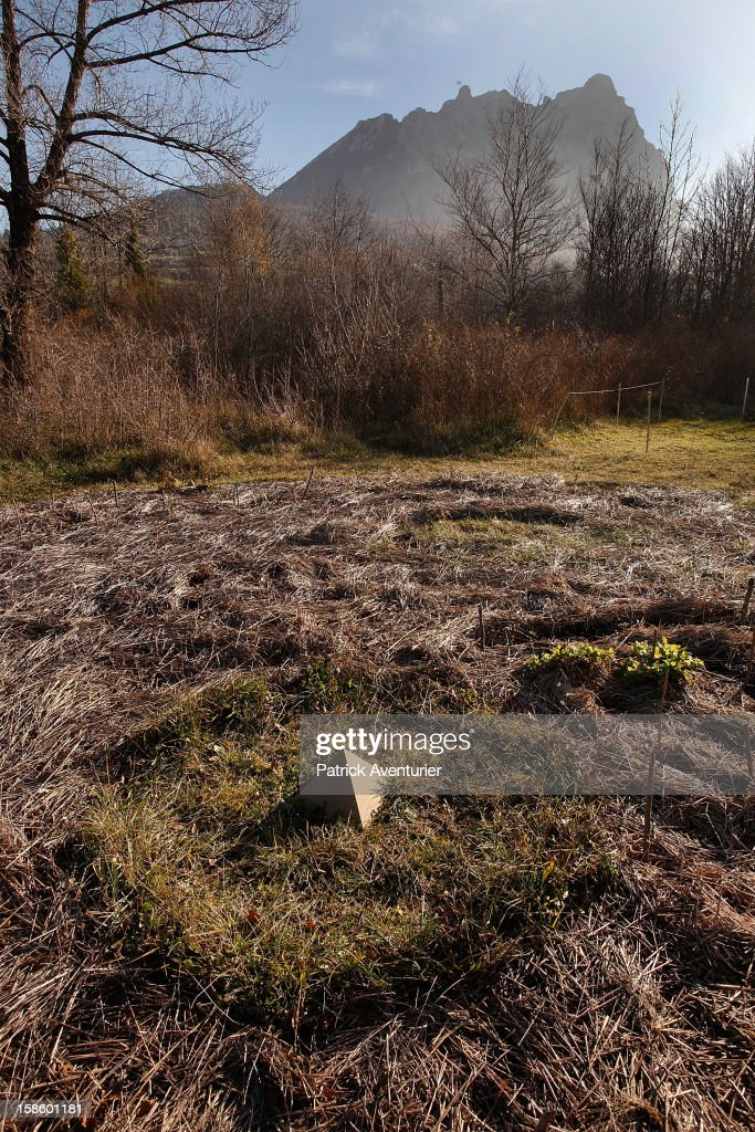 An pyramid shaped object lies in a field in Bugarath, a small village in the foothills of the Pyrenees on December 20, 2012 in Bugarach, France. Miviludes, the French Government's dedicated sect watchdog, are investigating the likelihood of apocalyptic sect activity or ritualised suicides due to the prophecy of an ancient Mayan calendar which also claims that Burgarach is the only place on Earth which will be saved from the apocalypse on the evening of December 21, 2012.