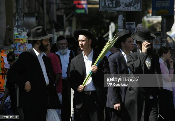 An Ultra Orthodox Jewish man walks holding Lulav one of four species to be used during the celebration of Sukkoth the feast of the Tabernacles in the...