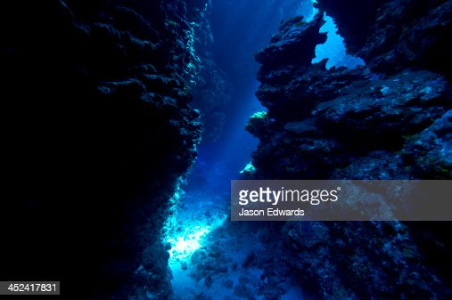 An underwater cave leads to a sunlit canyon between coral reefs.