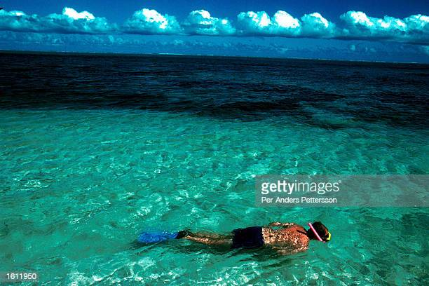 An unidentified man snorkels outside the Bora Bora Hotel April 22 1997 on Bora Bora an island in French Polynesia The island is a playground for rich...