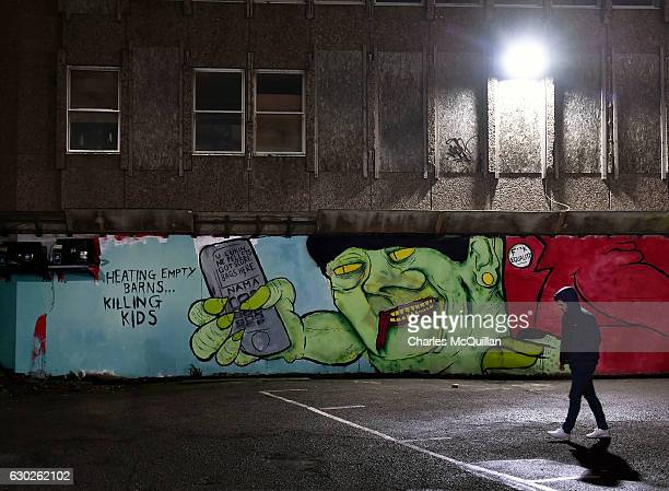 An unidentified man walks past a freshly painted mural referencing the RHI crisis and Arlene Foster in a city centre car park on December 19 2016 in...